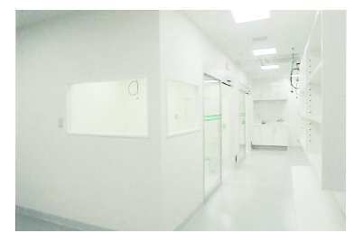 DVM動物医療センター横浜 店舗内装工事